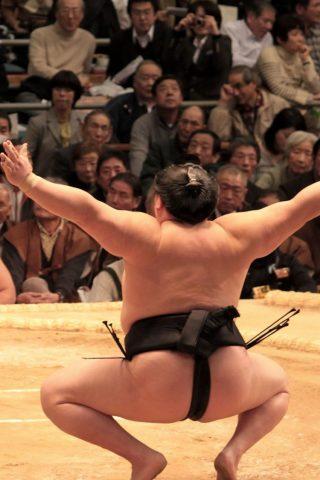 相撲iPhone6壁紙