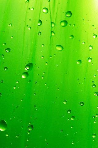 グリーンレインドロップiPhoneの壁紙
