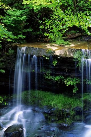 森の滝iPhone 7 Plus壁紙