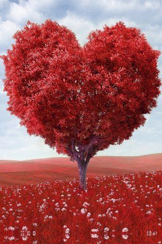 赤い木iPhone6壁紙