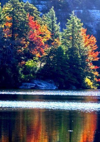 湖ミネワスカ秋iPhone6壁紙