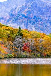 戸隠村湖の山樹木秋iPhone6Plus壁紙