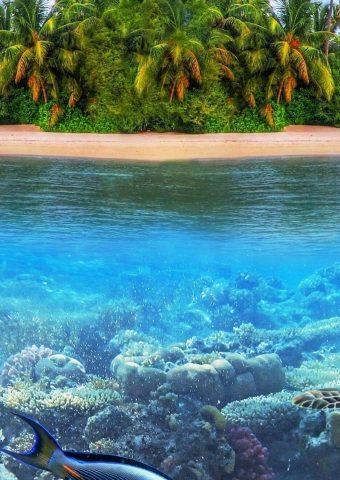 熱帯海のパラダイス島iPhone XS Max壁紙
