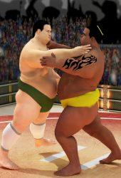 相撲摔角革命2019年iPhone壁紙