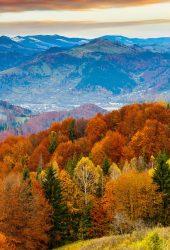 秋の山iPhone6壁紙