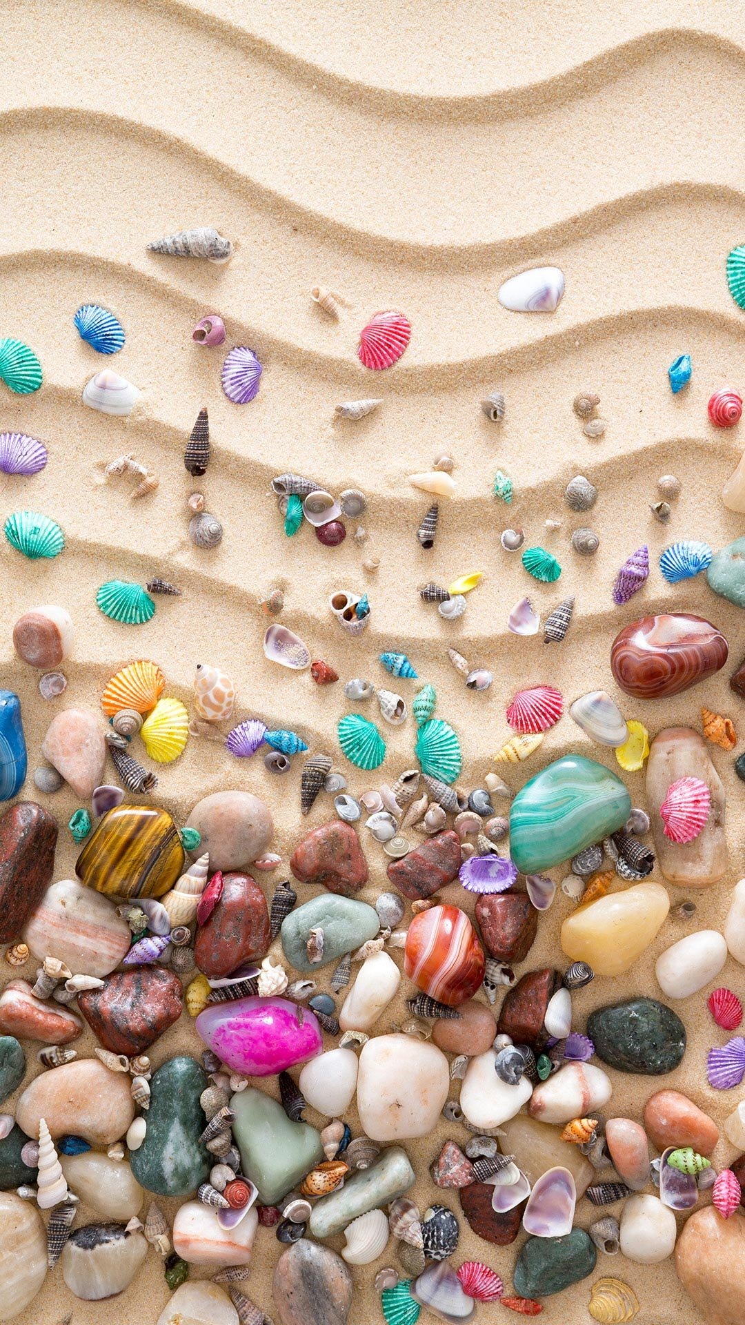 砂の上のカラフルな貝殻iphone 8 Plus Android自然壁紙 Iphoneチーズ