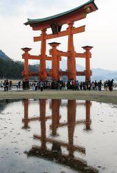厳島神社島iPhone 8 Plus/Android壁紙