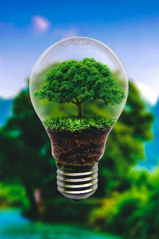 電球のスマホ壁紙