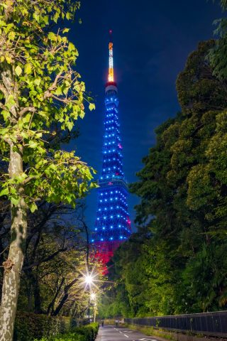 東京タワースマホ壁紙