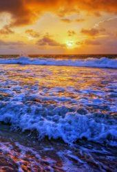 サンセットビーチのiPhone X/Samsung壁紙