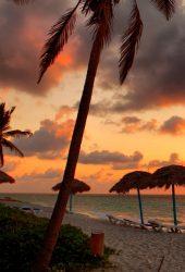 日没の写真撮影中にビーチのモバイル壁紙