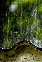 雨の写真壁紙